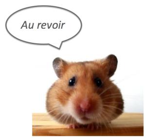 Giscard_aurevoir